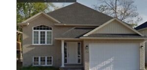 SINGLE ROOM SUBLET NEEDED ASAP. 26 TRENT AVE, WELLAND, ON