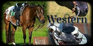 All EQUINE PRODUCTS COME HAVE A LOOK AT OUR WEBSITE Clarence Town Dungog Area Preview