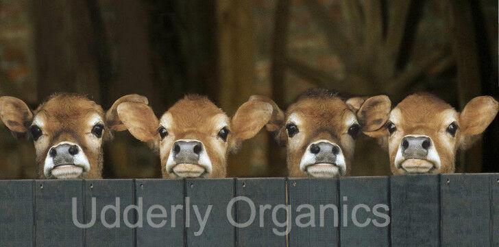 Udderly Organics