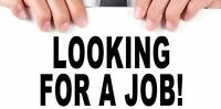 Looking for job in Electronic Retails please call 6479629766