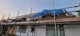 Roof Tiles concrete double roman free