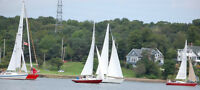 Adult/Family Learn to Sail Program - Armdale Yacht Club