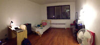 MCGILL 1-BDR APT LEASE TRANSFER + BUY MY FURNITURE