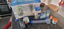Fishtank kit for Kids