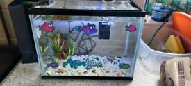 12L Starter Fish Tank.