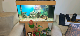Juwel rio 125 tank, Cabinet, fish and accessories