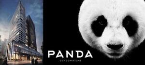 Panda Condos  located at Dundas St W & Yonge St, Toronto.