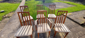 William Lawrence vintage fine dining chairs.x5 plus 1 carver chair