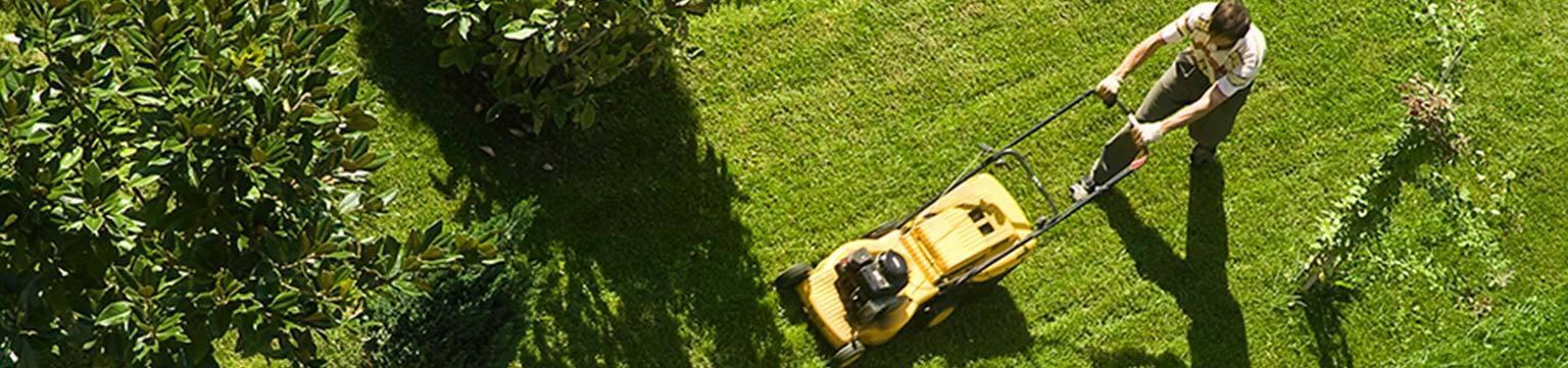 Garten Sonderverkauf bis zu -30% ggü. UVP
