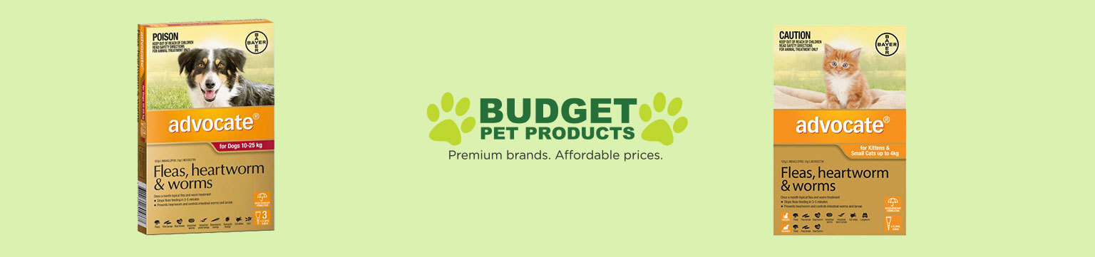 Save Big on Treatment for Your Pet