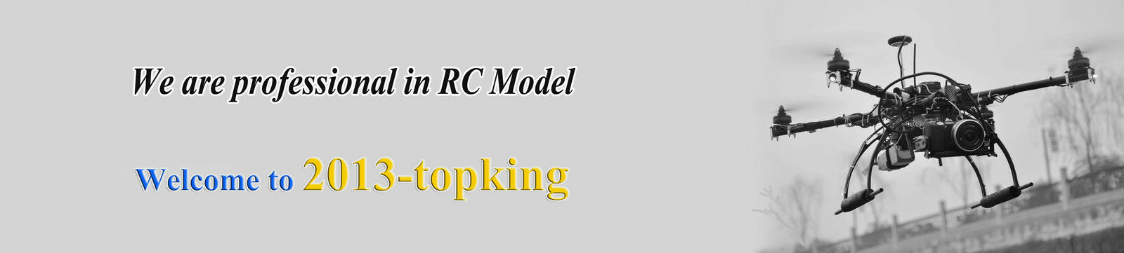 2013-topking