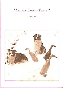 Border Collies and Geese Christmas Cards Box of 10