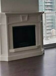 Gel Fuel Fireplace Unit for Sale