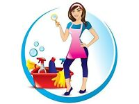 Reliable housekeeper EAST BELFAST