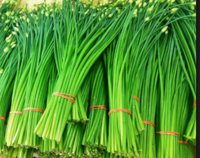 WANTED Garlic Chives plant