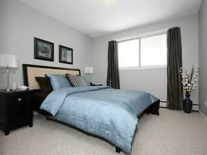 EXCELLENT CLEANING LADY Edmonton Edmonton Area image 5