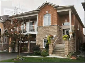 Gorgeous 3 Bedroom apartment in Brampton for rent - Oct 31, 2016