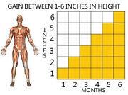 Height Pills