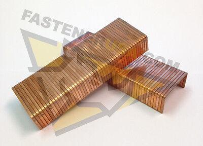 "C58  Carton Closing Staple  1-1/4"" Crown x 5/8"" Leg  2,000 per box"