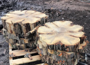 Walnut, Olive Wood, Maple! We are the sawmill -We are the source