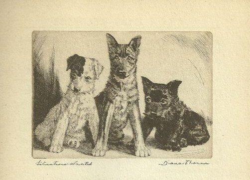 Fox / Scottish Terrier - Vintage Dog Print - 1936 Diana Thorne