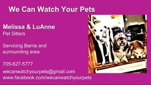 Pet Sitting/Pet Taxi/Dog Walking