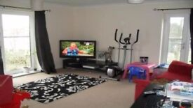 Swap my LARGE 2 bed new build in Teddington for your 2/3 bed House