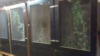 4 Large Custom Reptile Cages