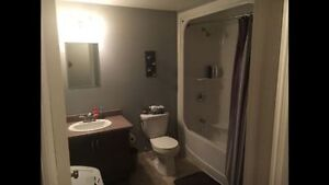 BEAUTIFUL 2 BEDROOM BASEMENT APARTMENT FOR RENT IN PARADISE St. John's Newfoundland image 5