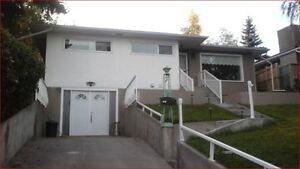 1br Walkout Basement Unit for Rent Close to Chinook and Downtown