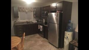 BEAUTIFUL 2 BEDROOM BASEMENT APARTMENT FOR RENT IN PARADISE St. John's Newfoundland image 8