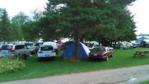 Cottage Trailer Camping sites Carbins Available, Boat Rental $75