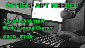 Professional male looking for apt/office