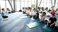 Corporate Yoga in your Office, Home, or SPECIAL EVENT
