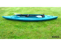 Kayak 2 Seater Perception Kiwi 3