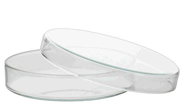 Petrischale, Glas mit Deckel, 80/100/120/150 mm, Petrischalen, Karton