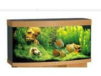 4 ft fish tank