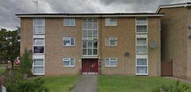 2 bed ground floor in Ipswich
