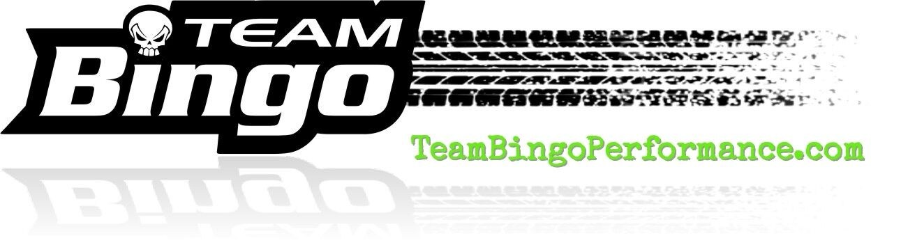 Team Bingo Performance
