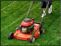 Landscaping and pressure washer