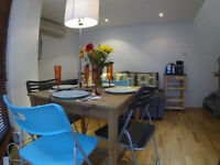 Ever so cheap and beautifull one bed apartmetn (high cealing) in Old street from September!!