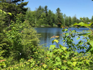 ★LAURENTIANS:Rustic Waterfront Cottage•Lake•Mountains•Trials•BBQ