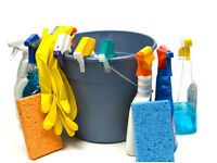 Mattishall Based Domestic Cleaning Service Offered