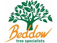 Tree Surgery Climber job in Leicestershire upto £30,000 Beddow Tree Specialists