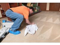 CARPET CLEANING - SECOND TO NONE