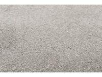 Ash Grey 92 Sirius 70oz Invictus Carpet - Brand New in Original Packing