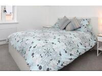 Ikea Malm King Size Bed and Mattress