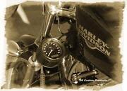 Harley Speedo