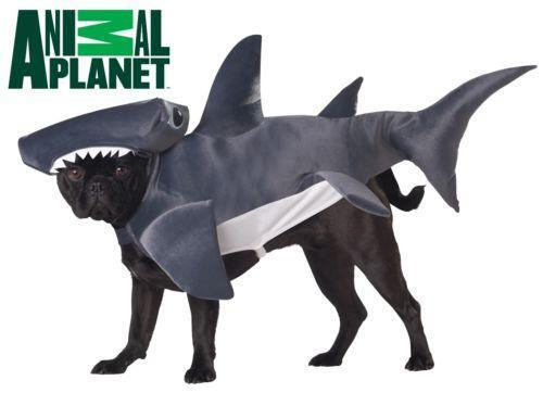 Hammerhead Shark Costume Ebay