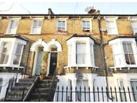 Fantastic condition 2 double bedroom flat to rent in Homerton
